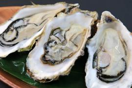 牡蛎肽全面提升战斗力,尽显男人霸气!——牡蛎肽功能详细介绍