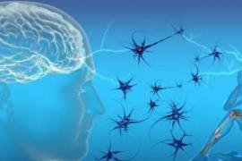 国内外干细胞注射技术在治疗脑瘫方面的应用
