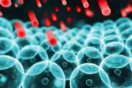 那些人最需要补肽?补什么肽比较好?