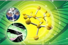 小分子肽有什么具体的作用?