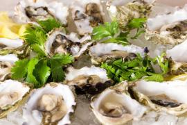 牡蛎肽的营养价值,人参牛骨髓牡蛎小分子肽批发