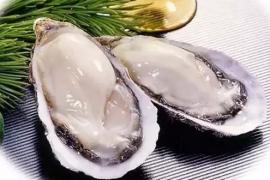 牡蛎肽知多少,牡蛎肽有什么药用价值