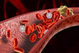 多肽地龙蛋白的功效与作用