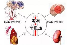 干细胞在治疗高血压及其并发症领域的应用