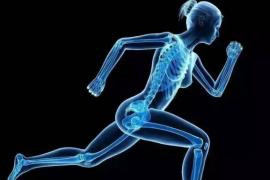 小分子肽对骨关节疾病腰椎间盘突出的效果