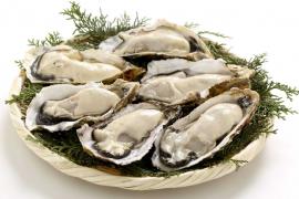 牡蛎肽除了能改善男性功能外用处良多,可惜一般人不知道!