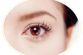 小分子肽对眼睛的营养作用