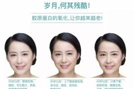 胶原蛋白抗衰老效果怎么样?女人吃胶蛋白肽能使皮肤变好吗?