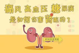 痛风的病:高血压与高尿酸痛风互为因果