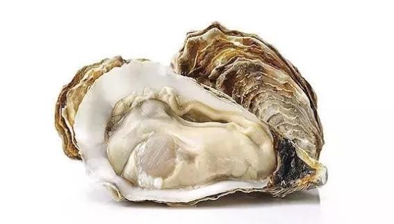 黄精牡蛎肽.png