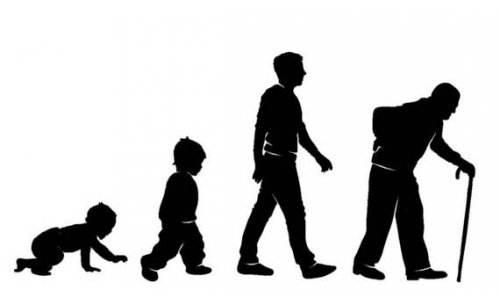 人衰老的过程.jpg