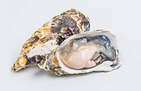 牡蛎肽的功能与作用:辅助降血糖,预防糖尿病并发症