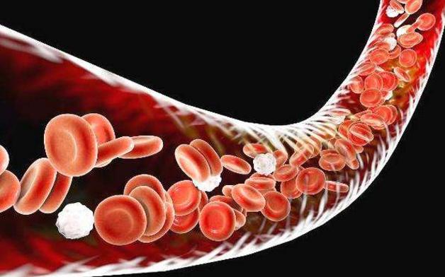 至宝多肽清理血管.png