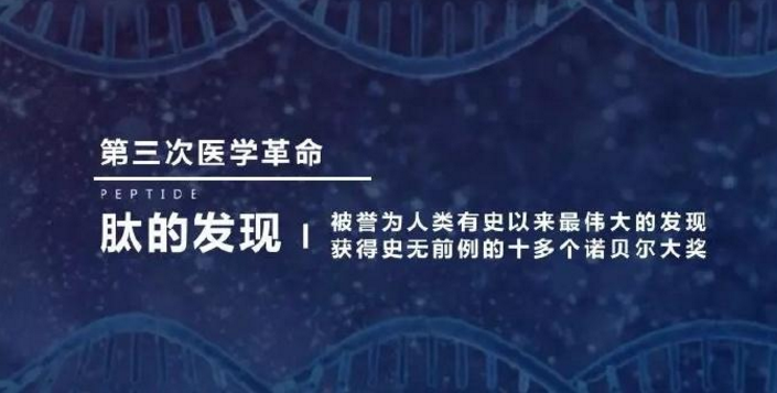 小分子肽功能.png